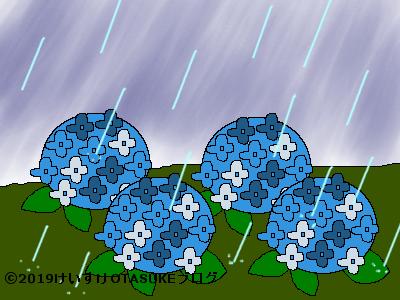 雨のなかを咲くアジサイのイラスト