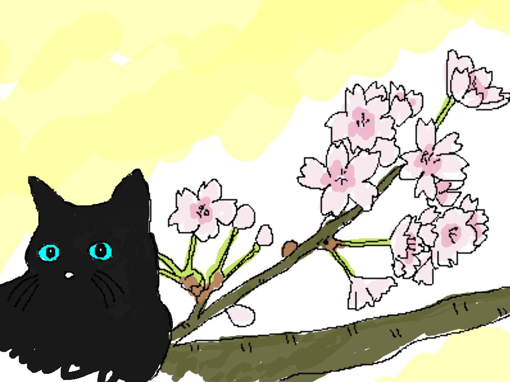 花の塗り絵を描いてみたよ親子いっしょに楽しめます