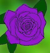 紫のバラのイラスト
