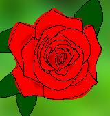 バラ赤のイラスト中サイズ