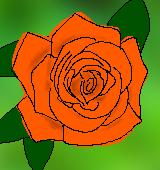 オレンジのバラのイラスト