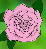 ピンクのバラのイラスト