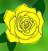黄のバラのイラスト