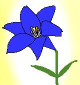 青いユリのイラスト