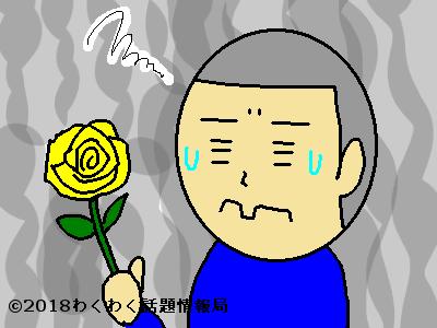花言葉 由来 日本