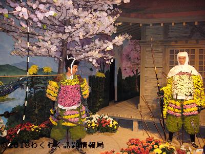 枚方大菊人形