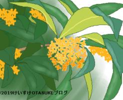 金木犀のイラスト