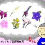 秋の七草の覚え方!「語呂合わせ」と「GIFアニメ」で楽楽暗記しよう