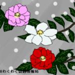 サザンカ(山茶花)の花言葉!その由来は健気に咲く花の姿にあったよ