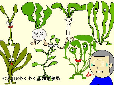 覚え 方 七草 春の