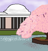 首都ワシントンの桜のイラスト