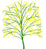 黄色のカスミソウのイラスト