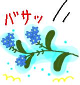 勿忘草の伝説のイラスト