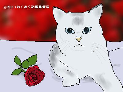 薔薇花言葉イラスト大