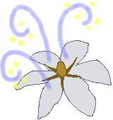 クチナシの香りのイラスト