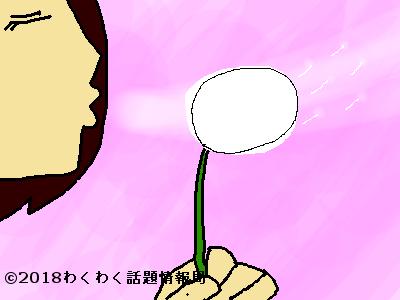 タンポポ占いで綿毛を吹く女性のイラスト