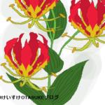 グロリオサの花言葉を詳しく解説!燃えるような花のメッセージとは?