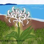 浜木綿の花言葉を詳しく解説します!海辺に咲く花のメッセージ