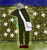 童謡カラタチの花のイラスト