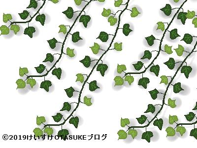 アイビーのイラスト