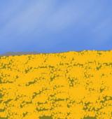 黄色く染まった大地のイラスト