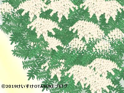 ナナカマド花のイラスト