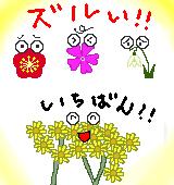 早春に咲くツワブキのイラスト