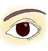女性の瞳のイラスト