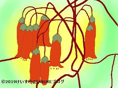 エンゼルランプのイラスト