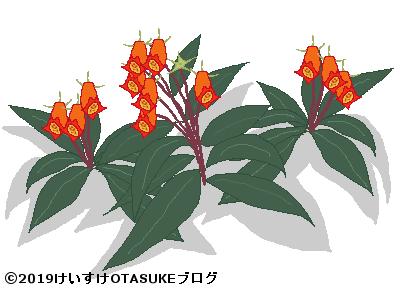 シーマニアのイラスト