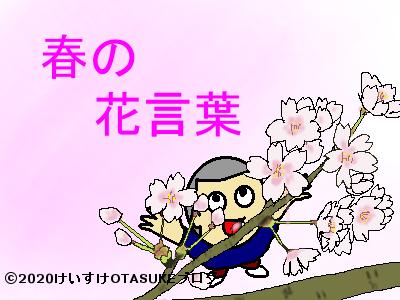 春の花の花言葉イラスト