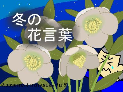冬の花言葉のイラスト