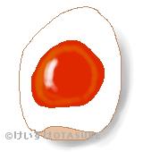 半熟卵のイラスト
