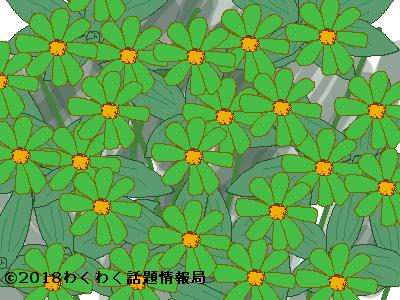 緑色の花言葉のタイトルイラスト