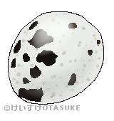 ウズラ卵のイラスト