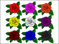 色別の花言葉